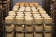 Extienden programa federal de cajas de alimentos